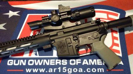 Armed America.jpg