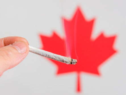 Smoking Marijuana In Canada