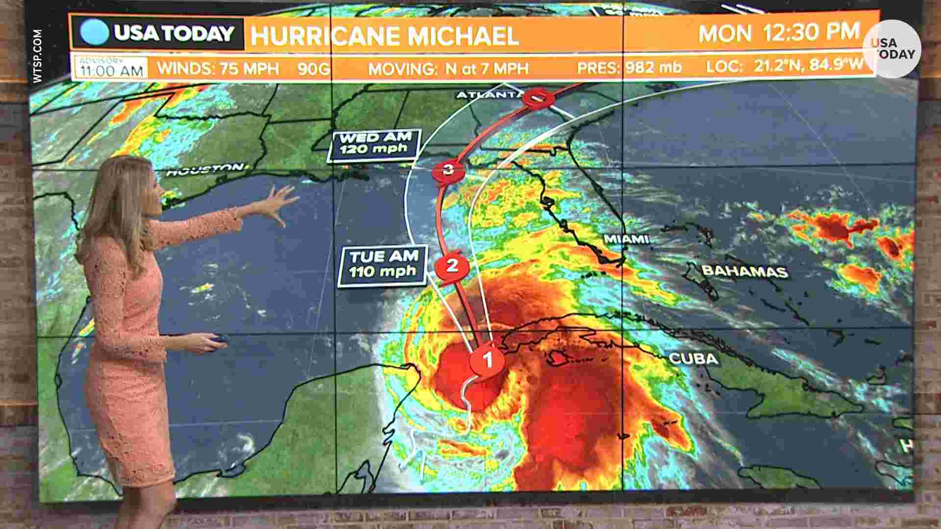 hurricane-michael-crimeshop