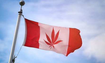 marijuana-laws-canada-hero-crimeshop