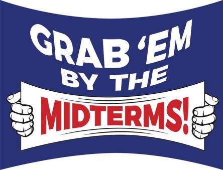 midterms-18-crimeshop