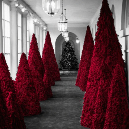 28-white-house-red-trees-christmas.w700.h700
