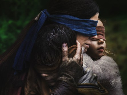 birdbox-netflix-crimeshop
