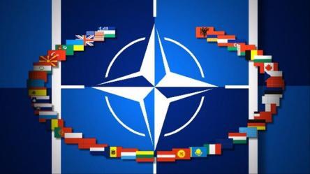 NATO9-crimeshop