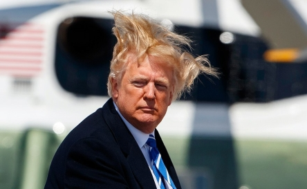 trump-crimeshop