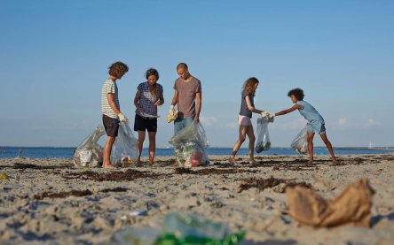 Group of people collecting trash on beach
