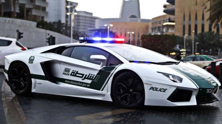 dubai-police-crimeshop