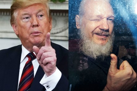 trump-shocked_assange_arrest_crimeshop