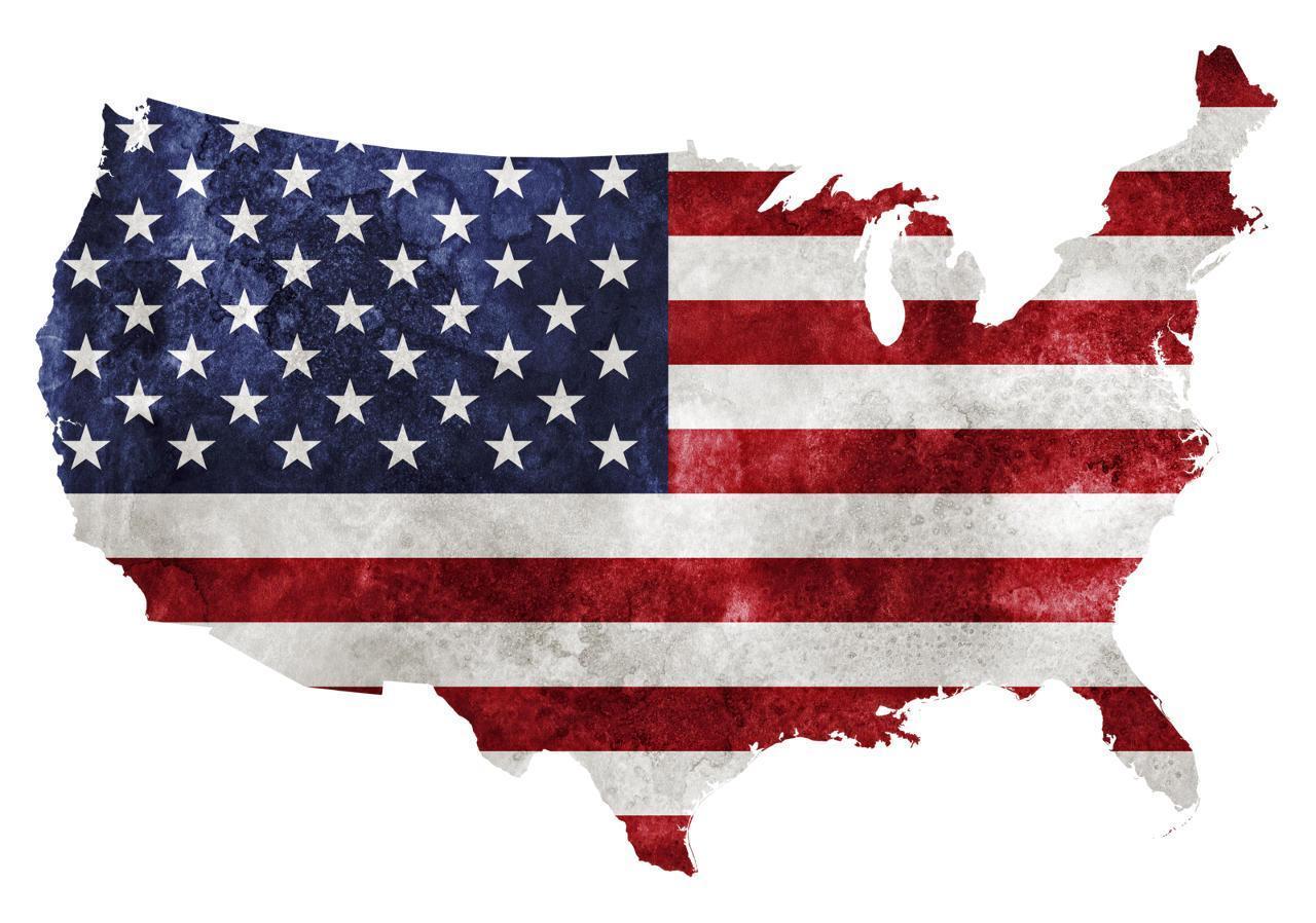 America-the-Dysfunctional-crimeshop