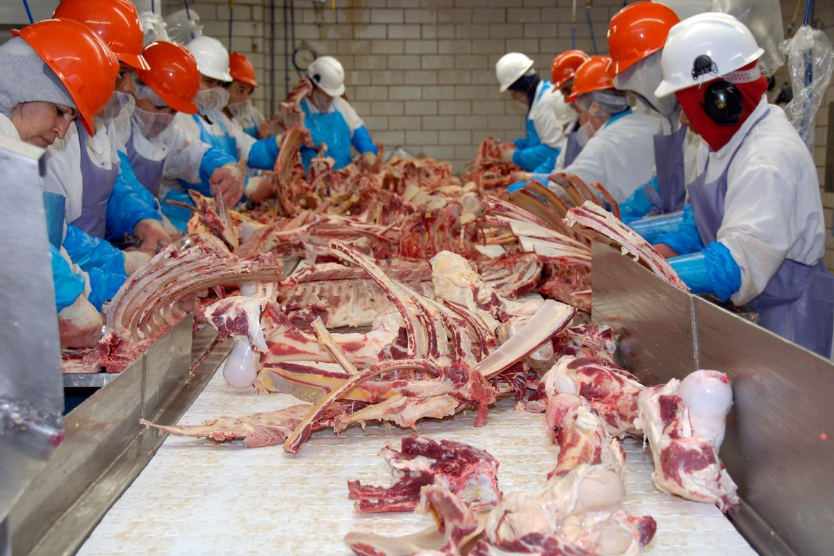 Meatpacking-industry-amid-coronavirus-crimeshop